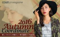 2016 Autumn Coordinate
